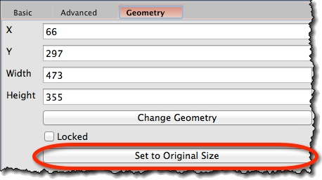 Image widget geometry properties